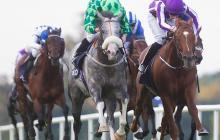 SallyBoom - HorseRacingKid
